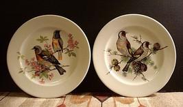 "Schumann Arzberg Bavaria Golden Crown Bird And Flowers Plate 8"" Germany ... - $13.89"