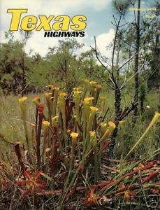 Primary image for Texas Highways February 1988 Magazine