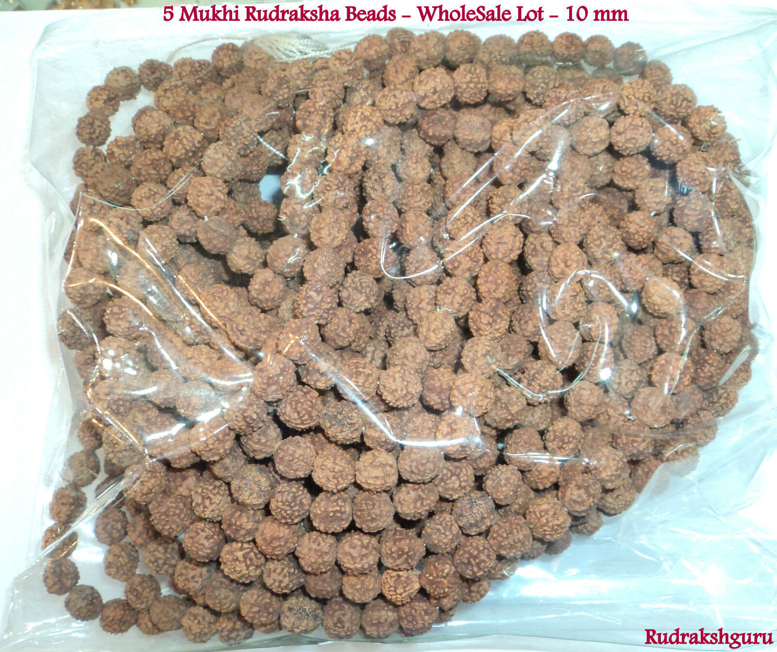 Primary image for 5 Mukhi Rudraksha / Five Face Rudraksh - Wholesale Lots - 10 mm