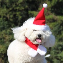 Pet Christmas Santa Hat + Scarf for Small Dogs & Cats Holiday -Dress Up  L - $9.59