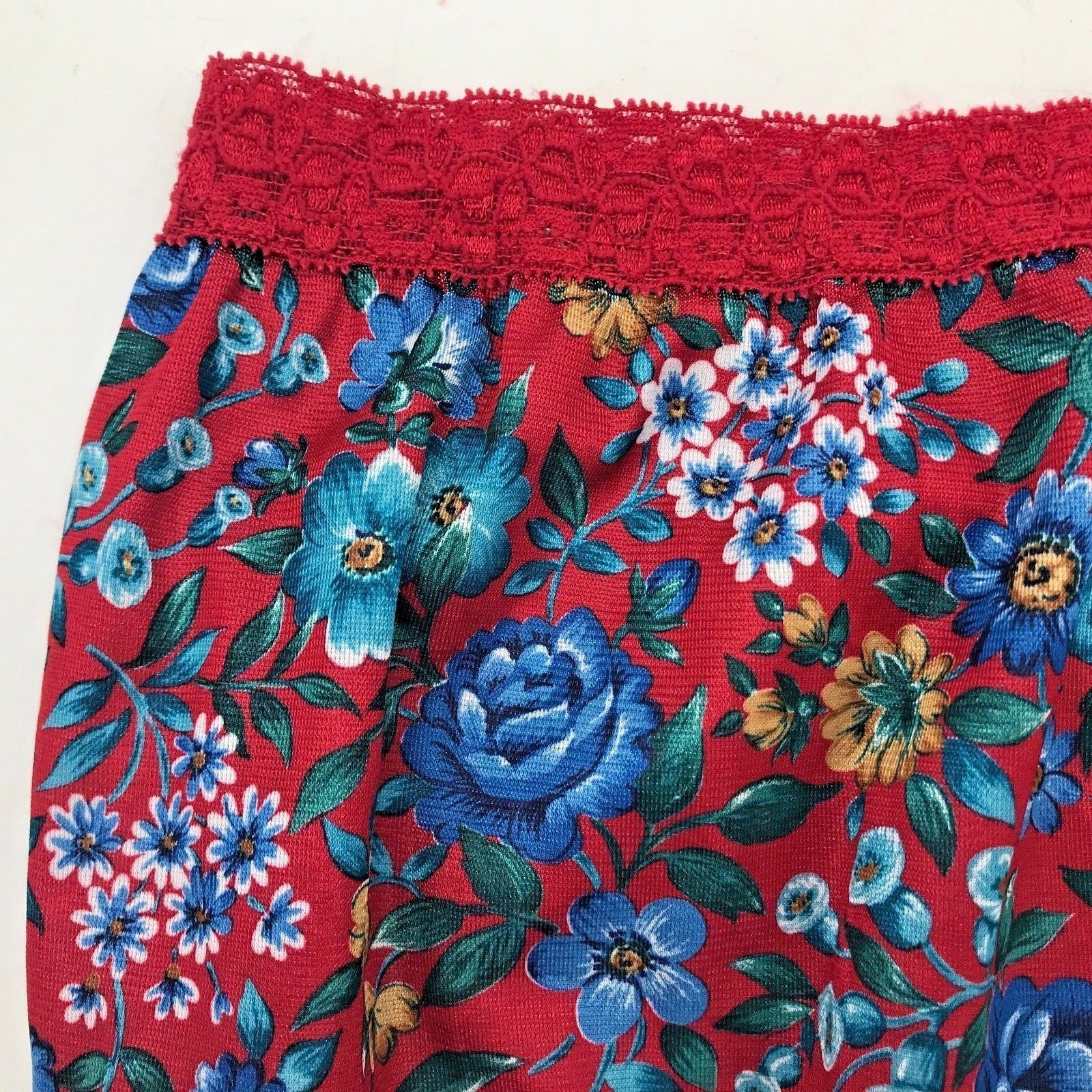fe9ca6588c0 Vintage Sears The Doesnt Panty Brief size 7 NWT Backseam Red Nylon Blue  Roses AC