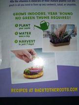 Back To The Roots Organic Microgreens Grow Kit ~ Rainbow Mix  New (1 kit per box image 4