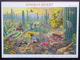 Beautifully USA 1998 SC#3293, Sonoran Desert, Stamps MNH VF Fast free sh... - $14.36