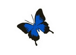 "set of 3 Butterfly Car Decal Stickers Free Decals BLACK And BLUE (3.9"")"