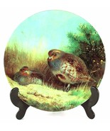 Partridges on a Summer Heath Our Magnificent Gamebirds Archibald Thorbur... - $32.67