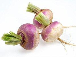 80k Seeds Turnip, Purple Top White Globe, NON-GMO - $19.96