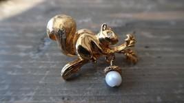 "Vintage Gold Tone AVON Squirrel Acorn Pearl Brooch 1.5"" - $15.83"