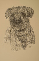 Border Terrier Dog Art Print #47 Stephen Kline adds your dogs name free. GIFT - $49.95