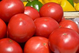 Tomato Rutgers VF Jersey Slicer Non GMO Heirloom Vegetable Seeds Sow No ... - $1.97+