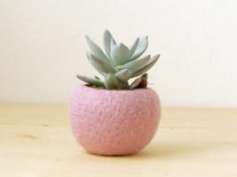 Felt succulent planter / felted bowl / Mini flower vase vase / sakura pink  - $19.00