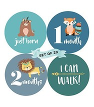 Baby Monthly Milestone Stickers Set of 20 - Birth to 12 Months + 7 Bonus... - $13.10