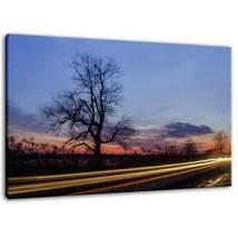 An item in the Art category: Wicked Tree Rural Landscape Photo Fine Art Canvas & Unframed Wall Art Prints
