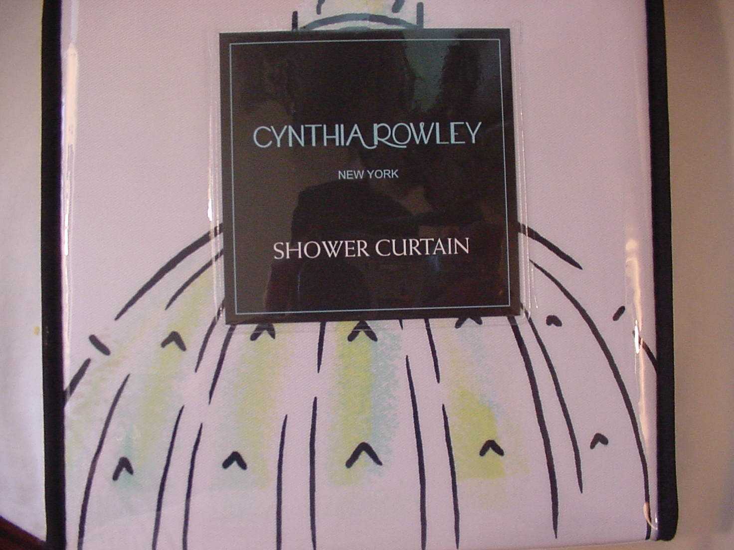Cynthia Rowley Rome Italy White/Black/Aqua/Green Shower Curtain