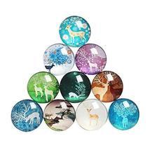 Koala Superstore Cute Cartoon Glass Refrigerator Magnets Home Office Dec... - $18.14