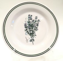 """Williams Sonoma 'Thyme' Green & Black Banded Herb 8-1/2"""" Salad Plate Portugal - $14.99"""