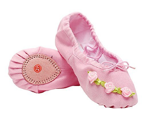 Dance Class Ballet Shoes/Canvas Dance Shoes For Pretty Girl (20.5CM Length)-Pink