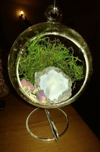 Glass globe hanging terrarium with geode - $26.00