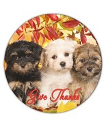 Lhasa Fall Give Thanks : Gift Coaster Dog Puppy Pet Leaves Autumn Animal Cute - £3.62 GBP - £18.17 GBP