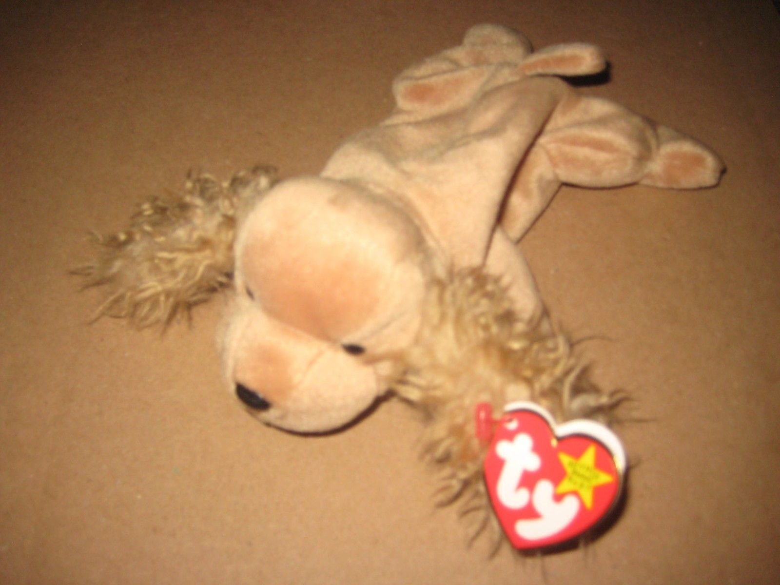 0df85125902 Ty Beanie Babies Spunky the Cocker Spaniel and 50 similar items
