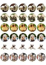 Puppies Pugs Dalmations Dog Breeds Edible Cupcake Toppers ABPID03938 - $9.99