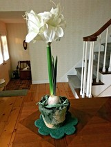 "Artificial Tall White Flower in Moss like Pot 20"" Tall - $11.75"
