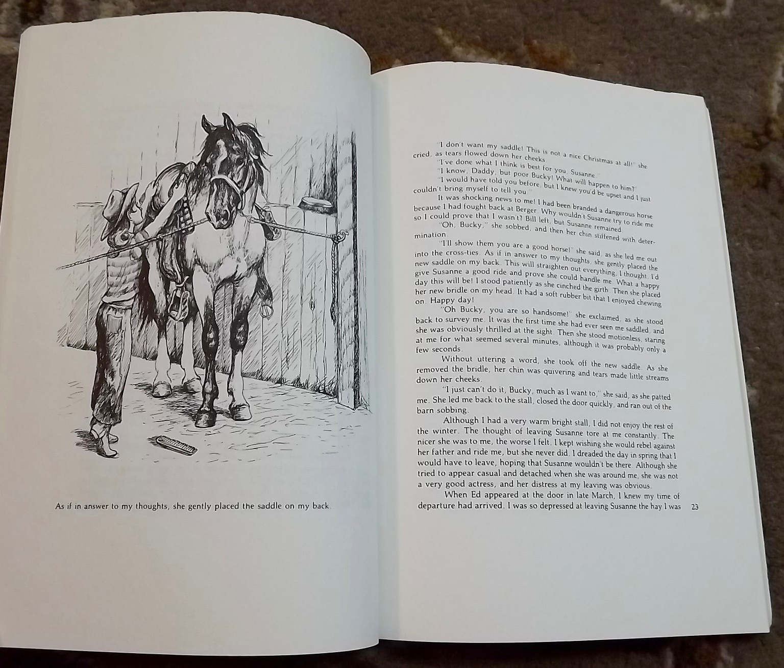 Monty's Pal by Howard Small a true horse story