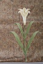 Osborne & Little 1 yd Liberty Floral Gabriel Cotton Upholstery Fabric Sa... - $51.30
