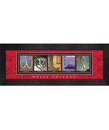 Wells College Officially Licensed Framed Campus Letter Art - $39.95