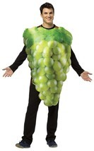 Green Grapes Adult Costume Get Real Women Men Tunic Food Fruit Halloween... - €49,31 EUR