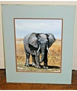 """AFRICA ELEPHANT~ Lithograph - Jackie Thompson ~ 11"""" x14"""" Matted PRINT - $41.58"""