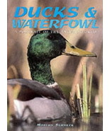 Ducks And Waterfowl : Marcus H Schneck : New Hardcover   @ZB - $9.95