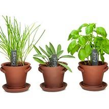 Window Garden Rustic Charm Herb Trio Kit with Planter Pots, Slate Marker... - $37.19