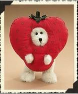 "Boyds Bears ""I. B. Jammin"" 6"" Plush Peeker Bear - #904535- New- 2006 -Re... - $21.99"