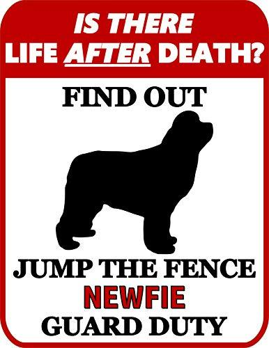 Primary image for Top Shelf Novelties is There Life After Death? Find Out Jump The Fence Newfoundl
