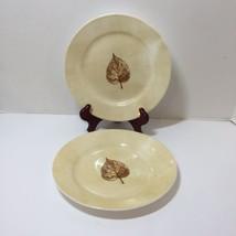 2 Salad Plates Corelle Woodland Brown Leaf - $16.44