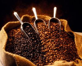 Wild Pines Outdoor Co. Fair Trade Coffee - Medium Roast - $13.00