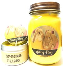 COMBO SET SPRING FLING (Daffodil Aroma) - 16oz Country Jar Soy Candle an... - $23.00