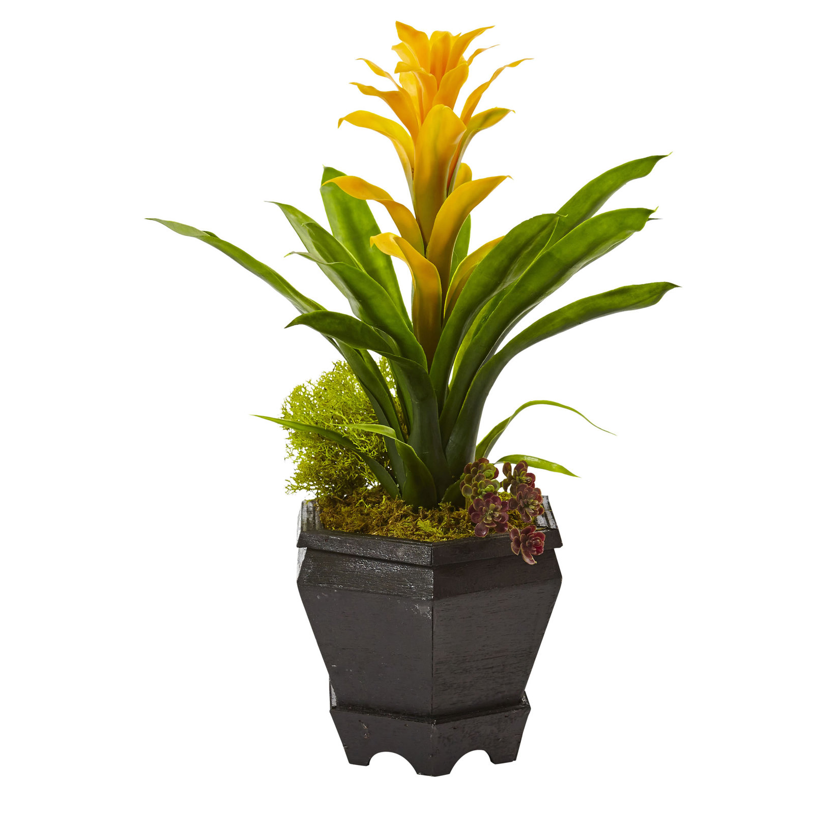 "16.5"" Bromeliad in Black Hexagon Planter"