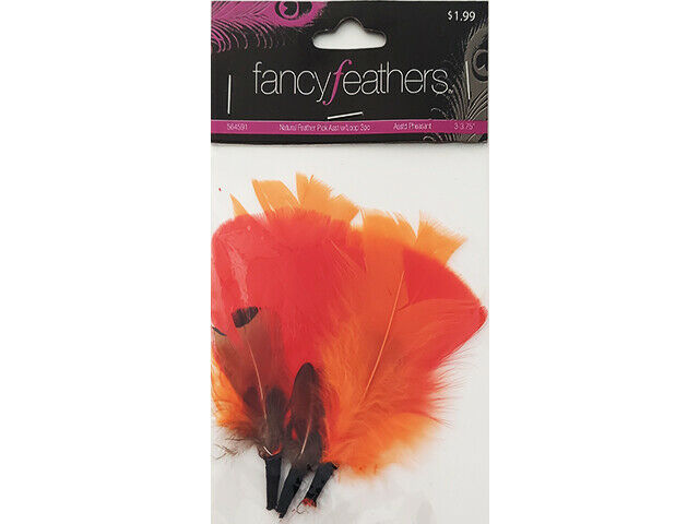 Hobby Lobby Fancy Feathers Natural Feather Pick with Loop #564591