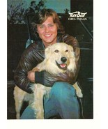 Greg Evigan teen magazine pinup clipping 70's with a puppy squatting Tee... - $1.50