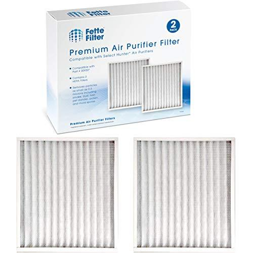 Fette Filter - 2 Premium Air Purifier HEPA Filters Compatible with Hunter 30930,