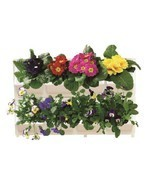 Modular Wall Mounted Planter System: 8 Planters for Herbs, Flowers, Vege... - ₨3,440.65 INR