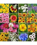Non GMO Bulk Hummingbird / Butterfly Wildflower Seed Mix (10 Lbs) - $404.86