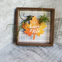 """Fall Decor Plaque, live air plants, Wooden shadow box, autumn leaf """"Happy Fall"""" image 4"""