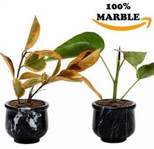 Succulent Pot Small Artificial Handmade Marble Modern Succulent Pots -No... - $22.16 CAD