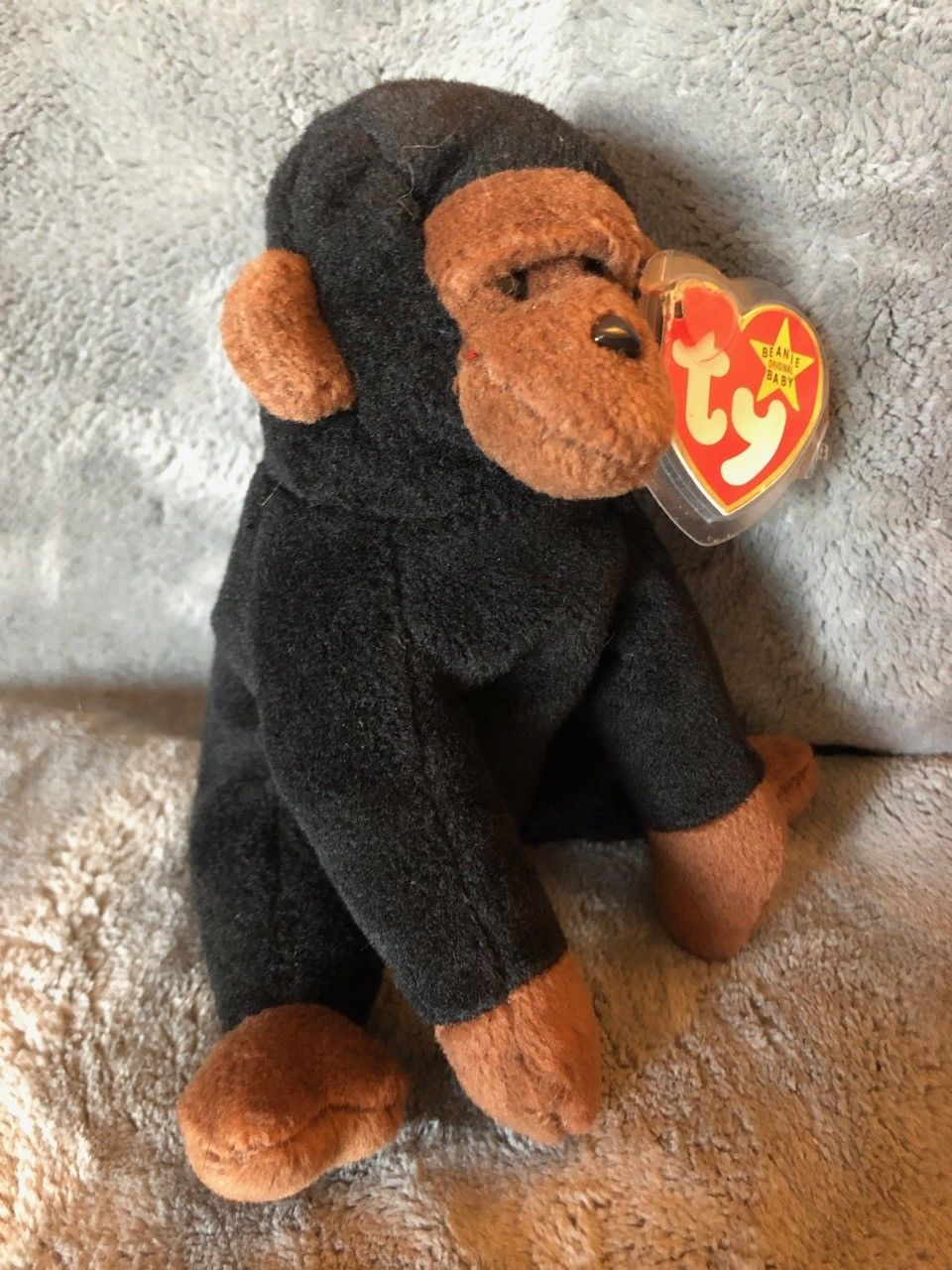 62a546ad27c Rare Ty Beanie Baby CONGO Gorilla with HIPPITY Tush Tag Mistake
