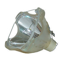 REPLACEMENT BULB FOR LIGHT BULB / LAMP 52001-BOP, SONY LMP-H202 BULB ONLY - $101.74