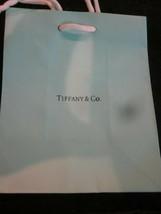 Tiffany & Co. Robin Egg Blue Gift Bag - $9.99