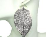 Silver leaf thumb155 crop