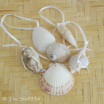 Seashell Christmas Ornaments Shell Natural Beach House Mermaid Nautical ... - $8.99
